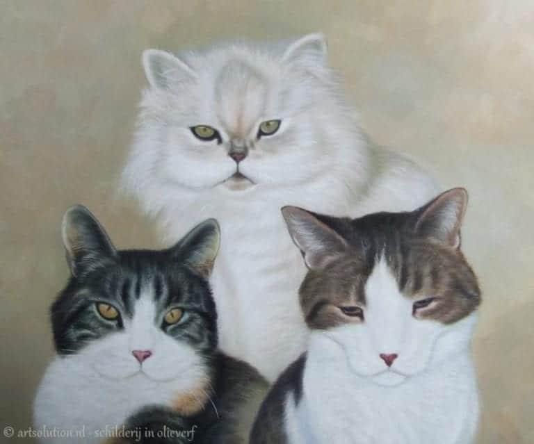 Schilderij 3 katten