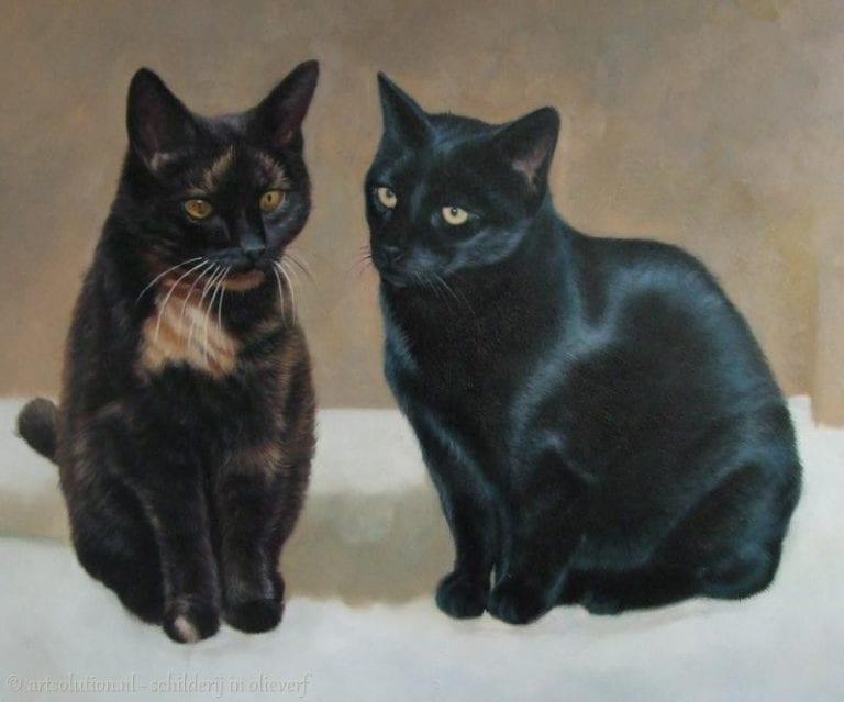 Schilderij katten